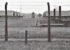 AUSCHWITZ BIRKENAU - Barracks in the female sector of the camp at Birkenau. The camp fence is visible in the foreground, then remnants of the wooden barracks and behind them the brick barracks. One of the watch towers appears in the background.