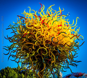"Dale Chihuly ""Garden of Glass"""
