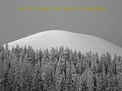 The Cone in Black & White    Mt. Bachelor