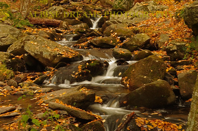 Called   GO WITH THE FLOW   this shot shots the beauty of a small mountain stream in the fall.  Note the leaves on the rocks.