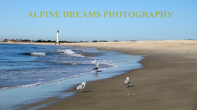 GULLS-COVE-LIGHTHOUSE
