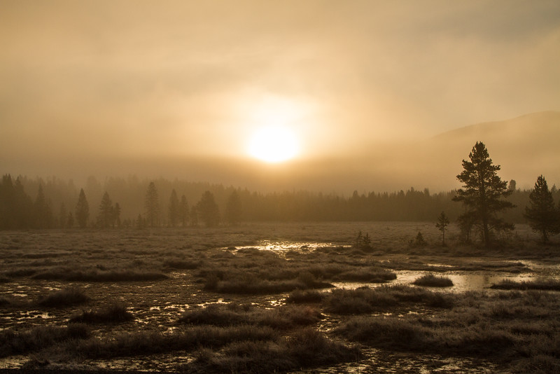 Morning's Glory - Yellowstone National Park