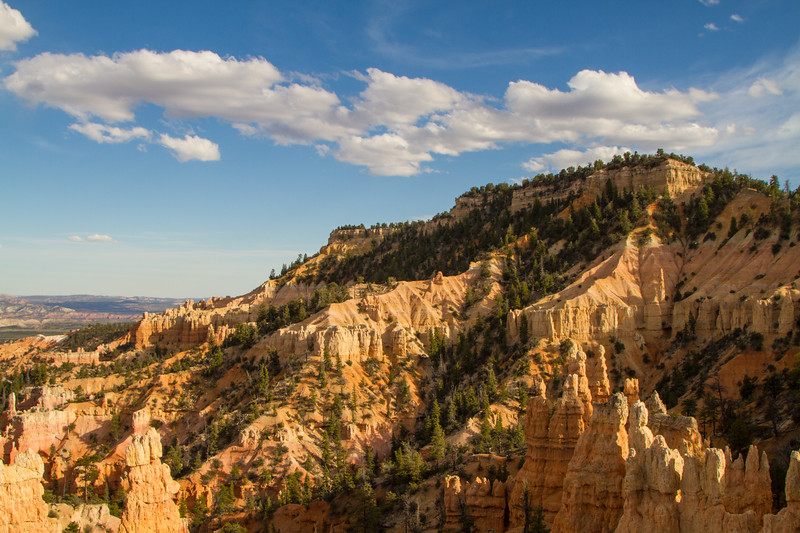 Stillness - Bryce Canyon National Park