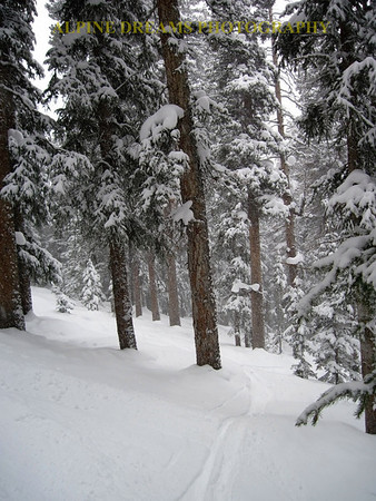 POWDER TRAILS