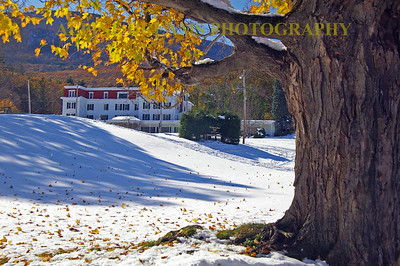 This Stately Hotel sits up the hill a short walk from the Crystal Brook. The massive tree trunk frames the Hotel with the mountain in the background. The snow with fresh fallen leaves are a rare bonus!