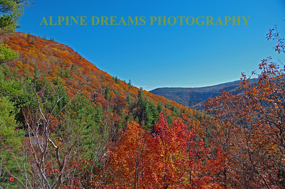 This Vista was seen from across the road from CATSKILLS FALLS.    Nice Sky.  Peak Foliage!