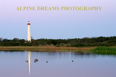 Called LIGHTHOUSE & POND this shot was taken near the marsh/pond which was used pretty heavily by Birders in the Park near the lighthouse..   I never saw Birders before this trip  but now I know. They specialiize in bird shots or simply watch them with binoculars.  Taken at dawn the light burst was more pronounced in the reflections between the ducks.