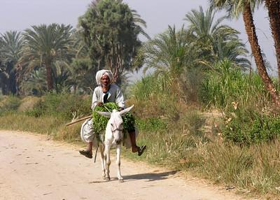 LUXOR - EGYPT