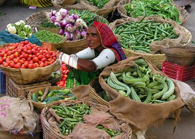 UDAIPUR - RAJASTHAN, INDIA