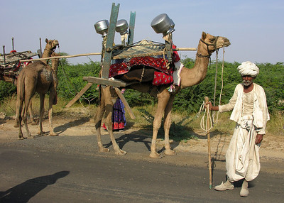 RABARI MAN - KUTCH, INDIA