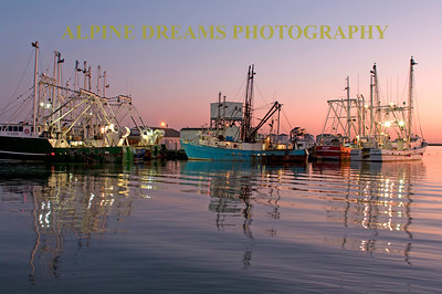 Work Boats at Dawn! The Pink Sky was Awesome right before the Sun popped up along with the still waters and the rigging lights added to the beauty of these work boats at rest. This Marina is one of the must see spots in and around Cape May.