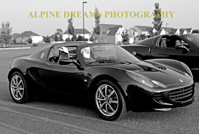 BLACK-LOTUS-BW