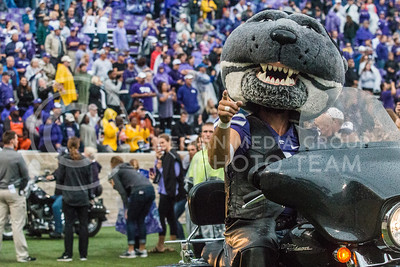 Willie Wildcat on a motorcycle at Bill Snyder Family Stadium on Oct. 14, 2017. (Logan Wassall   Collegian Media Group)