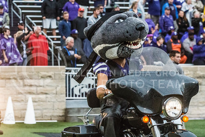 Willie Wildcat on a motorcycle at Bill Snyder Family Stadium on Oct. 14, 2017. (Logan Wassall | Collegian Media Group)