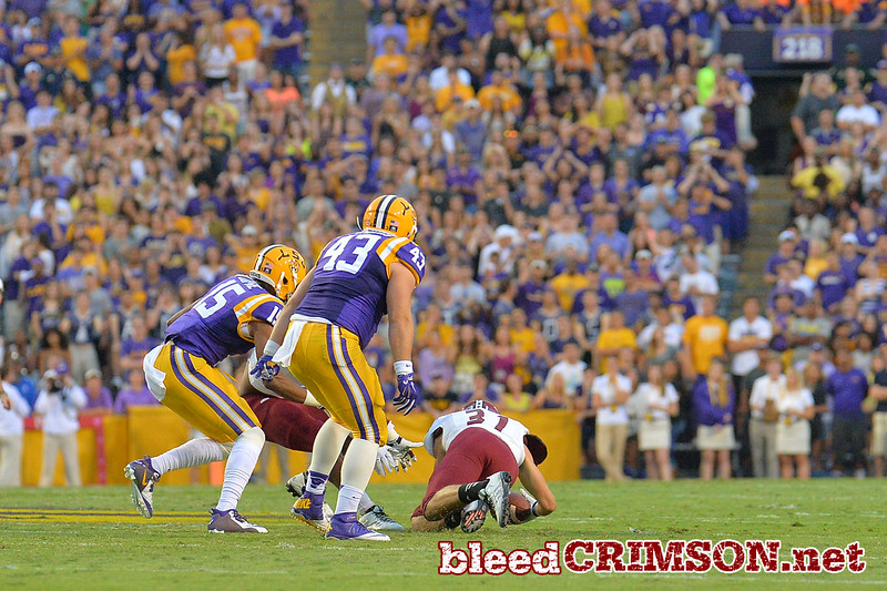 September 5, 2014: New Mexico State Aggies defensive back Dalton Herrington (31) recovers a fumble during a game between New Mexico State and No. 17/18 LSU at Tiger Stadium in Baton Rouge, LA.