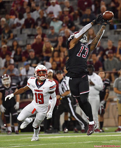 LAS CRUCES, NEW MEXICO - OCTOBER 05, 2019:  Wide receiver Tony Nicholson #13 of the New Mexico State Aggies tries to haul in a pass against safety Chris Megginson #19 of the Liberty Flames during their game at Aggie Memorial Stadium on October 05, 2019 in Las Cruces, New Mexico.  (Photo by Sam Wasson)
