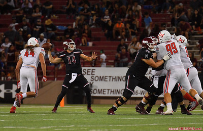 LAS CRUCES, NEW MEXICO - OCTOBER 05, 2019:  Quarterback Josh Adkins #14 of the New Mexico State Aggies drops back to pass against the Liberty Flames during their game at Aggie Memorial Stadium on October 05, 2019 in Las Cruces, New Mexico.The Flames defeated the Aggies 20-13.  (Photo by Sam Wasson)