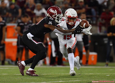 LAS CRUCES, NEW MEXICO - OCTOBER 05, 2019:  Wide receiver Tony Nicholson #13 of the New Mexico State Aggies tries to catch a pass as he's defended by safety Chris Megginson #19 of the Liberty Flames during their game at Aggie Memorial Stadium on October 05, 2019 in Las Cruces, New Mexico.The Flames defeated the Aggies 20-13.  (Photo by Sam Wasson)