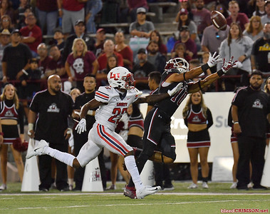 LAS CRUCES, NEW MEXICO - OCTOBER 05, 2019:  Wide receiver Izaiah Lottie #10 of the New Mexico State Aggies tries to catch a pass as he's defended by cornerback Kei'Trel Clark #23 of the Liberty Flames during their game at Aggie Memorial Stadium on October 05, 2019 in Las Cruces, New Mexico.The Flames defeated the Aggies 20-13.  (Photo by Sam Wasson)