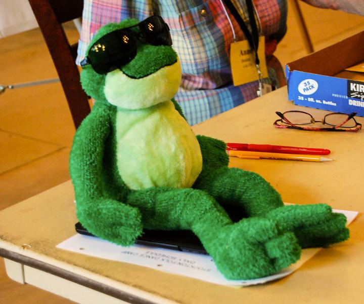 Mr  Frog