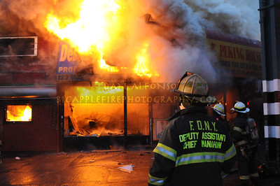 Bronx 33-3084; March 22, 2009