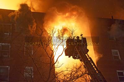 Brooklyn 55-2439 Feb 19, 2011