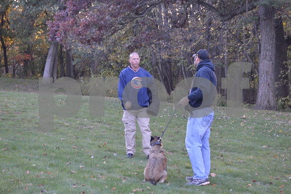At Oleson Park, several demonstrations with the dogs took place.