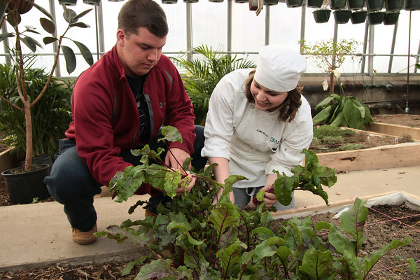Farm to Table program at Eastern Center