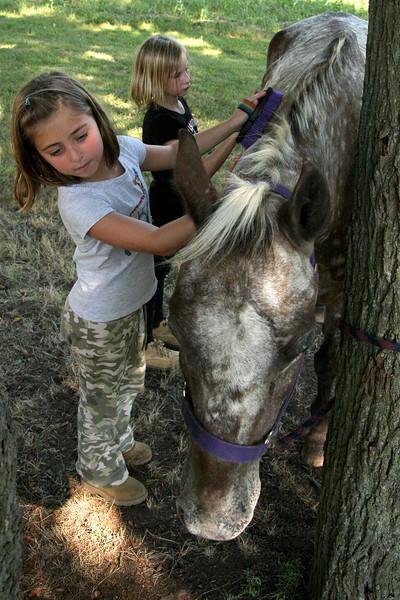 Pony Share