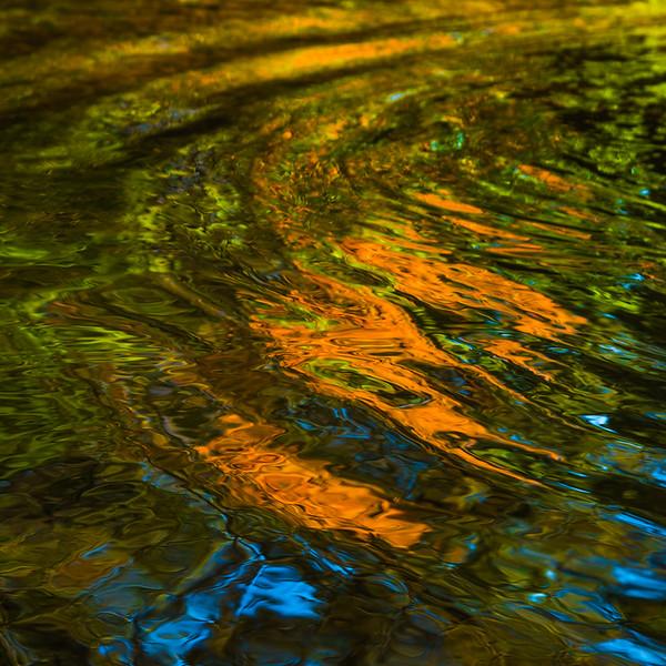 FALL REFLECTIONS  4