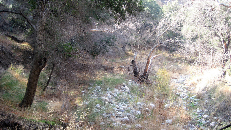 A peaceful Canyon View in the back country of Placerita Canyon