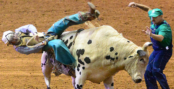 Kevin Harvison | Staff photo<br />  A cowboy gets off a bull after completing his 8 second ride during the professional rodeo at the Southeast Expo Saturday.