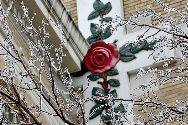 Kevin Harvison | Staff photo<br /> Ice remains on tree limbs outside the Masonic Temple in McAlester Thursday morning.