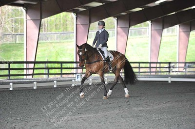 FENCE HORSE TRIALS 4.14.2018