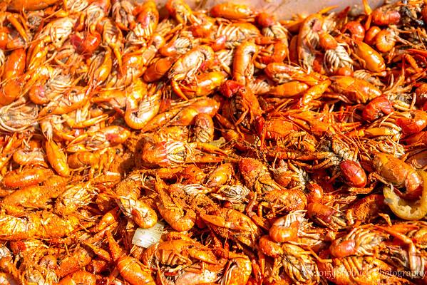 Crawdebauchery II 2015 Food and Music Fest in Pompano Beach