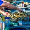 Charleston Museum Oyster Roast - Dill Sanctuary 2017 -100-60