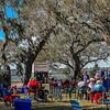 Charleston Museum Oyster Roast - Dill Sanctuary 2017 -100-44