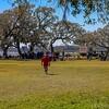 Charleston Museum Oyster Roast - Dill Sanctuary 2017 -100-46