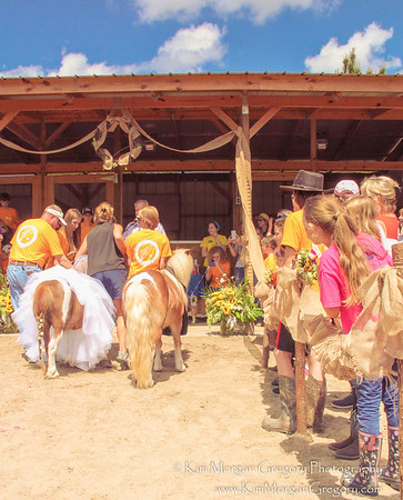 L.E.A.R.N. HORSE RESCUE