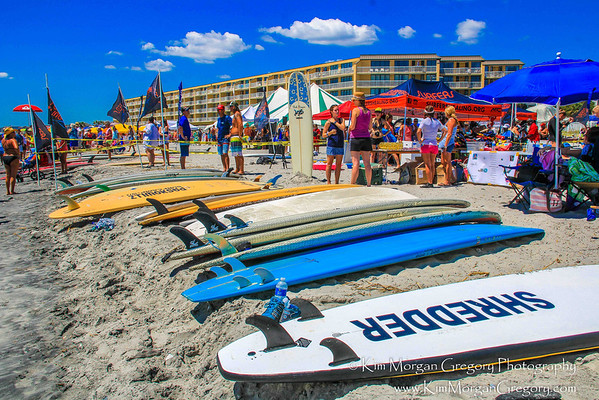 SURFER'S HEALING 2016 - One Perfect Day