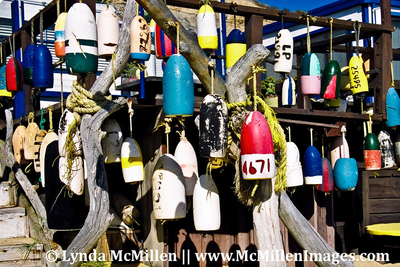 Buoys at El Moro home.  This joyful resident was relocated when the State took over Crystal Cove   in Newport Coast, California.