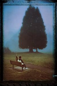 Crestwoods Park, Kirkland, WA
