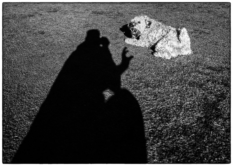 Keep your shadow hand off of my stick