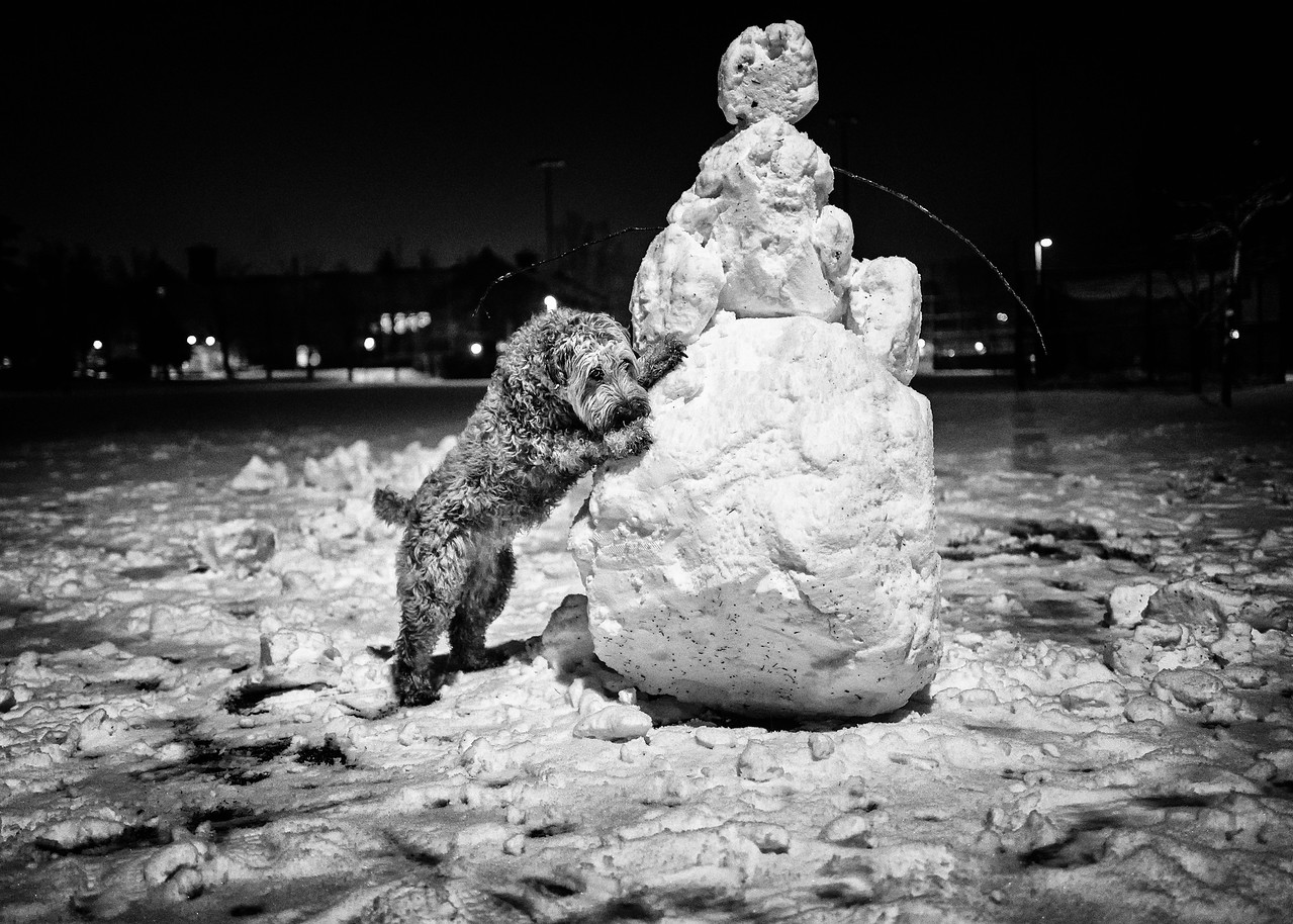 Any last words, snowman?