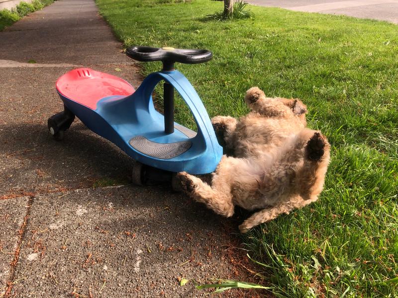 Scooter Crash