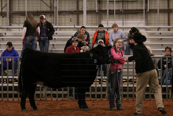 Best of  2014 Collin County Livestock Show