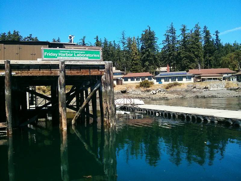 Friday Harbor Labs from the dock.