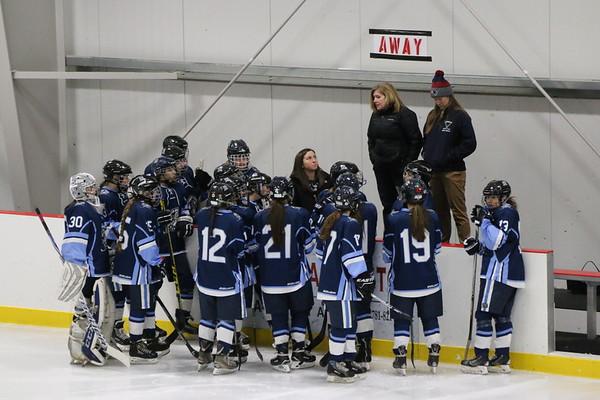 FHS Girls Varsity  Hockey
