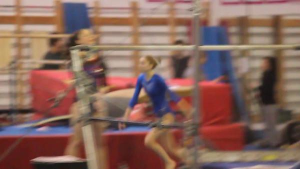 FHS Gymnastics 2016 - 2017