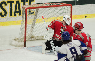 FHS LHS hockey 1-27-17
